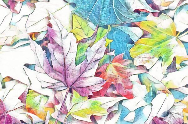 Frunze toamna